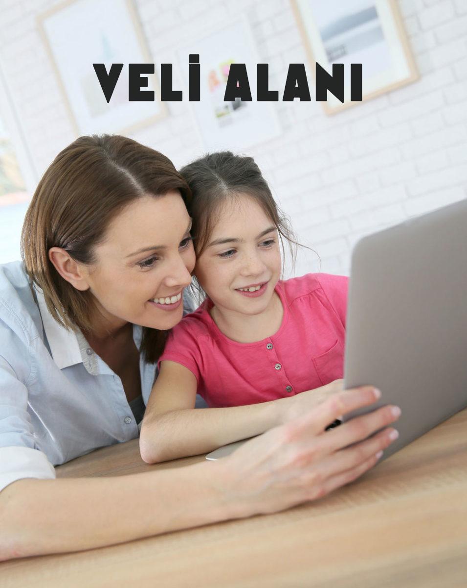 veli-alani-anasayfa-2